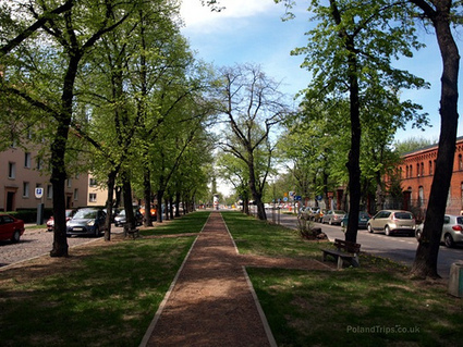 New evidence that city trees reduce crime | Kaid Benfield's Blog | Switchboard, from NRDC | Sustainable Futures | Scoop.it