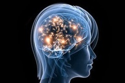 Improved Cognitive Function in Older Adults - Susan Polgar Chess ... | Cognitive Ageing | Scoop.it