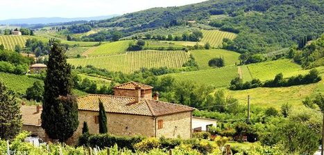 The green season in Tuscany | Italia Mia | Scoop.it