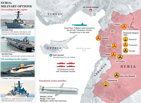 (1) Syria: Military Options | Middle East Collections | Scoop.it