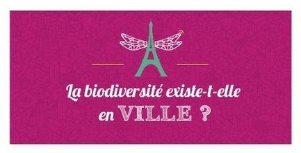 La biodiversité en vignettes - Ministère du Développement durable | Chimie verte et agroécologie | Scoop.it