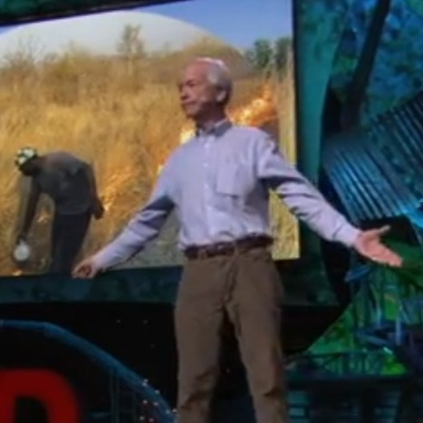 Desertifiation is on the increase - Someone give this man a Nobel Prize. He's going to save the Planet! | Permaculture, Horticulture, Homesteading, Bio-Remediation, & Green Tech | Scoop.it