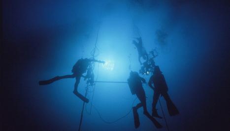 Le saviez-vous ? Les grands fonds océaniques réagissent déjà au changement climatique - National Geographic   Biodiversité   Scoop.it