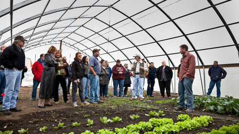 The Seeds of a New Generation | Local Food | Scoop.it