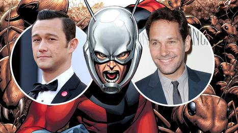 Marvel Likes Joseph Gordon-Levitt, Paul Rudd for 'Ant-Man' (EXCLUSIVE)   Heng Maruay Tangmitrphracha   Scoop.it