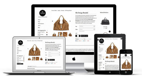 Cartsy WordPress e-Commerce Theme | Free Premium WordPress Themes | Scoop.it