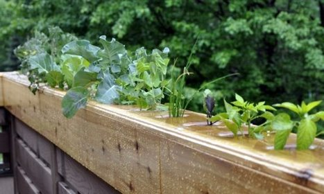 Urban Greenery, Submitted by highviewcreations: A hydroponic... | Digital Fabrication, Open Source Hardzware, DIY, DIWO | Scoop.it