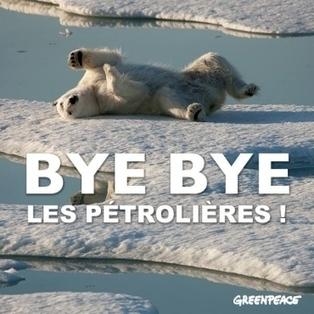 3 compagnies pétrolières stoppent leurs explorations au #Groenland  - en #Norvège, par contre | Hurtigruten Arctique Antarctique | Scoop.it