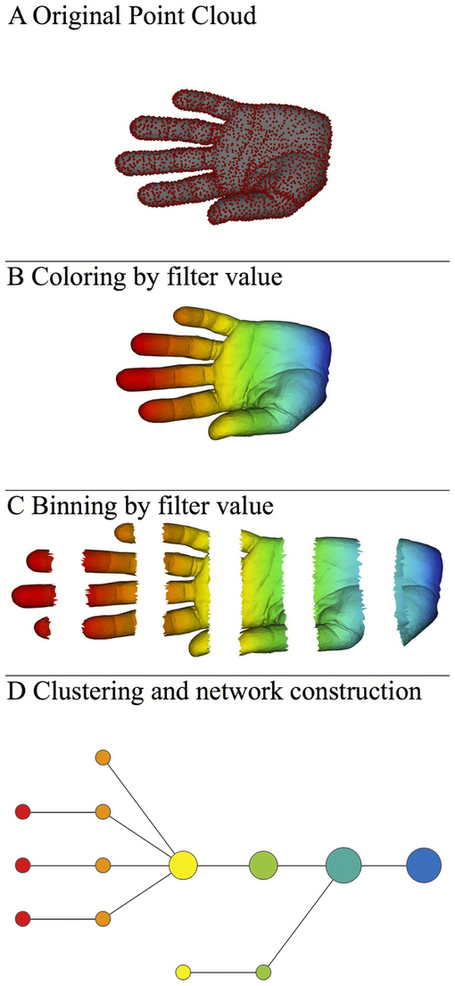 Extracting insights from the shape of complex data using topology : Scientific Reports : Nature Publishing Group | MABS | Scoop.it