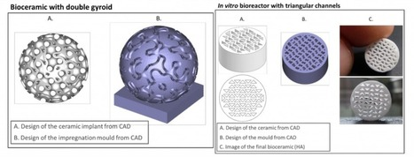Multistation Presents New 3D Printing Process for Bioceramics | 3D_Materials journal | Scoop.it