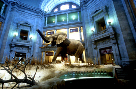 10 Amazing Free Museums in the U.S. | enjoy yourself | Scoop.it