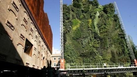 Los jardines verticales más asombrosos del mundo (Fotos) | Jardines Verticales y azoteas verdes. | Scoop.it