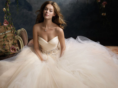 Bridal Shops In Decatur: Top 3 Tips To Find The Perfect Wedding Store | Bridal Gown Shopping Experience | Scoop.it