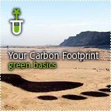 How to Go Green: School Teachers   Kids Going Green!!   Scoop.it