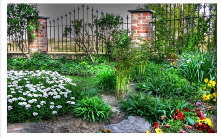 How to design your perfect garden using the tech at your fingertips | Garden apps for mobile devices | Scoop.it
