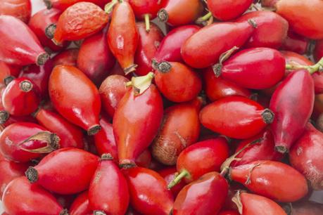 Aceites vegetales para realzar tu belleza | Apasionadas por la salud y lo natural | Scoop.it
