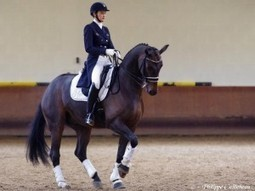 Equitation: Flamboyante Jessica Michel ! [PHOTO] | My Angers.info | Cheval et sport | Scoop.it