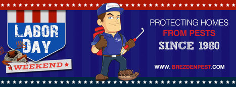 Don't Let Pests Crash Your Labor Day Party! | Home and Garden Services | Scoop.it