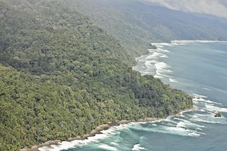 Costa Rica – hors-les-murs 2011 - Rodolphe Alexis | DESARTSONNANTS - CRÉATION SONORE ET ENVIRONNEMENT - ENVIRONMENTAL SOUND ART - PAYSAGES ET ECOLOGIE SONORE | Scoop.it