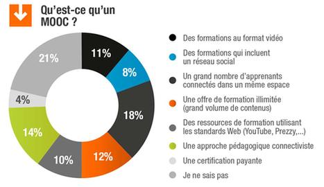 Le MOOC : seulement 2% des organisations l'ont mis en place ‹ e-doceo blog | MOOC & EDUCATION | Scoop.it