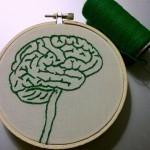 ¿Cómo nuestro cerebro emocional bloquea la innovación? | Gabriel Catalano human being | #INperfeccion® a way to find new insight & perspectives | Scoop.it