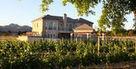 L'été est aussi la saison des transferts dans le vin | Epicure : Vins, gastronomie et belles choses | Scoop.it