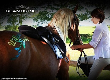 Temporary tattoos are the latest fashion trend... for HORSES!   Horse Industry News   Scoop.it