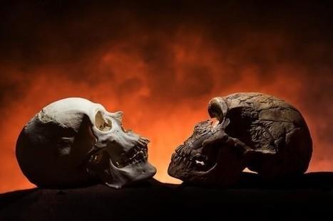 La barbilla apareció a medida que el hombre se hizo más colaborativo | Arqueología, Historia Antigua y Medieval - Archeology, Ancient and Medieval History byTerrae Antiqvae (Blogs) | Scoop.it