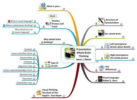 Presentation Whole Brain Thinking Jerre Lubberts   Alexis van Dam   Visual Toolkit   Scoop.it