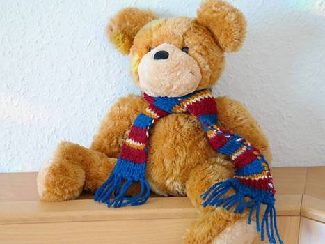 Classroom teddy bears 'encourage competitive parenting' - The Independent | Assessment Resources | Scoop.it