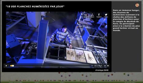 Herbier 2.0: websérie documentaire | Bio3D | Scoop.it