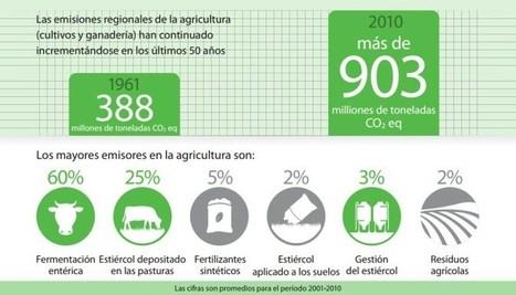 Latinoamérica duplicó sus emisiones agrícolas de gases de efecto invernadero en últimos 50 años | Agroindustria Sostenible | Scoop.it