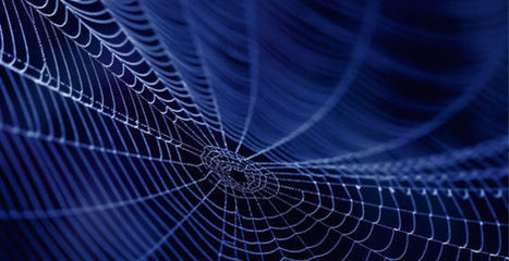 In The Future, Spider Silk May Help Grow Your Replacement Heart | Managing Technology and Talent for Learning & Innovation | Scoop.it