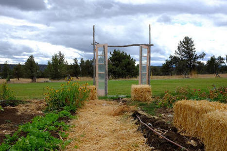 Organic Farming Better Suited To Climate Change, Study Finds | sustainablity | Scoop.it
