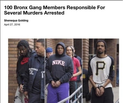 New York Media Calls 120 People Gang Members Because the Police Said So | MARTIN'S.IMMIAFRIKA | Scoop.it