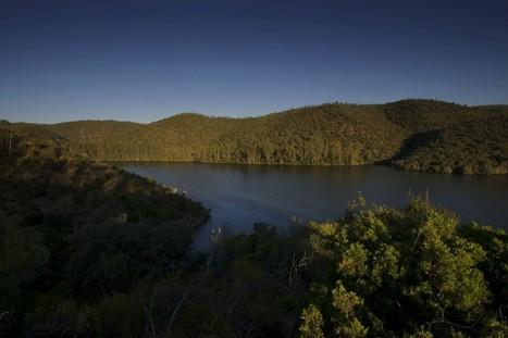 Portugal e Espanha querem candidatar Tejo Internacional a reserva da UNESCO - Público.pt | Meio Ambiente em Portugal | Scoop.it