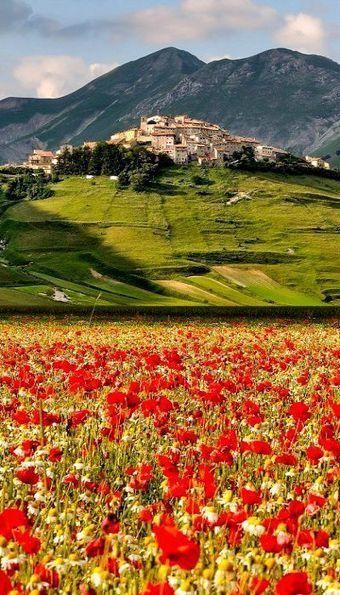 The Fiorita of #CastellucciodiNorcia, #Umbria: the great show of nature! | Umbria & Italy | Scoop.it