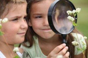 Confidentiel : Nature & Découvertes va ouvrir une marketplace   L'ACTUAWAM   Scoop.it