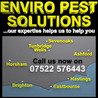 Cost effective pest control Kent has to offer