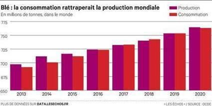 La production agricole mondiale ralentit, International | Quentin SERVANT | Scoop.it