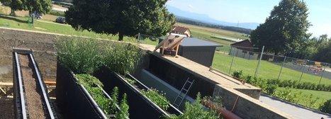 Lutter contre la contamination de l'eau par les pesticides | Le Vin et + encore | Scoop.it