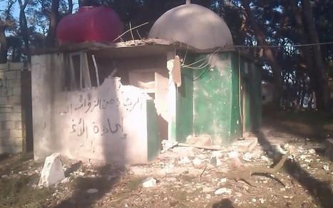 Syrie : Le génocide oublié | Agence pour les Droits de l'Homme | Vocalises internationales | Scoop.it