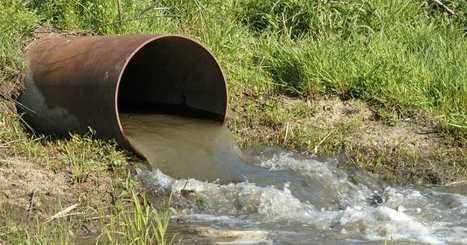 Del conocimiento apasionado al ambientalismo infuso | Agua | Scoop.it