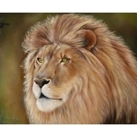 Lion from Judea - Realistic Oil Painting | acrylic painting | Scoop.it