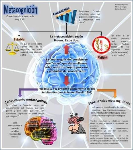 Metacognición – Cómo Desarrollar nuestro propio Conocimiento | Infografía | Recull diari | Scoop.it