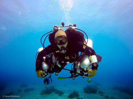 Egyptian Scuba Diver Ahmed Gabr Plunges 1066 Feet to Set World Record - NBCNews.com | DiverSync | Scoop.it
