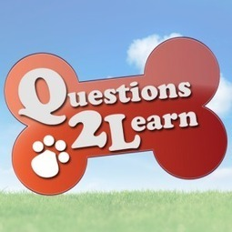 Questions2Learn   Apps For Children with Special Needs   Young Adult and Children's Stories   Scoop.it
