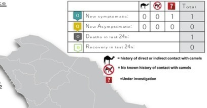 Avian Flu Diary: Saudi MOH: Najran Reports Another Primary MERS Case | MERS-CoV | Scoop.it
