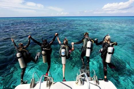 Experience Scuba Diving in Thailand before the Year Ends | Thailand Hotels 24/7 | Business and Stuff | Scoop.it