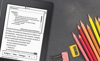 Ebooks – Quelques chiffres sur le livre numérique selon Nielsen | L'édition numérique pour les pros | Scoop.it